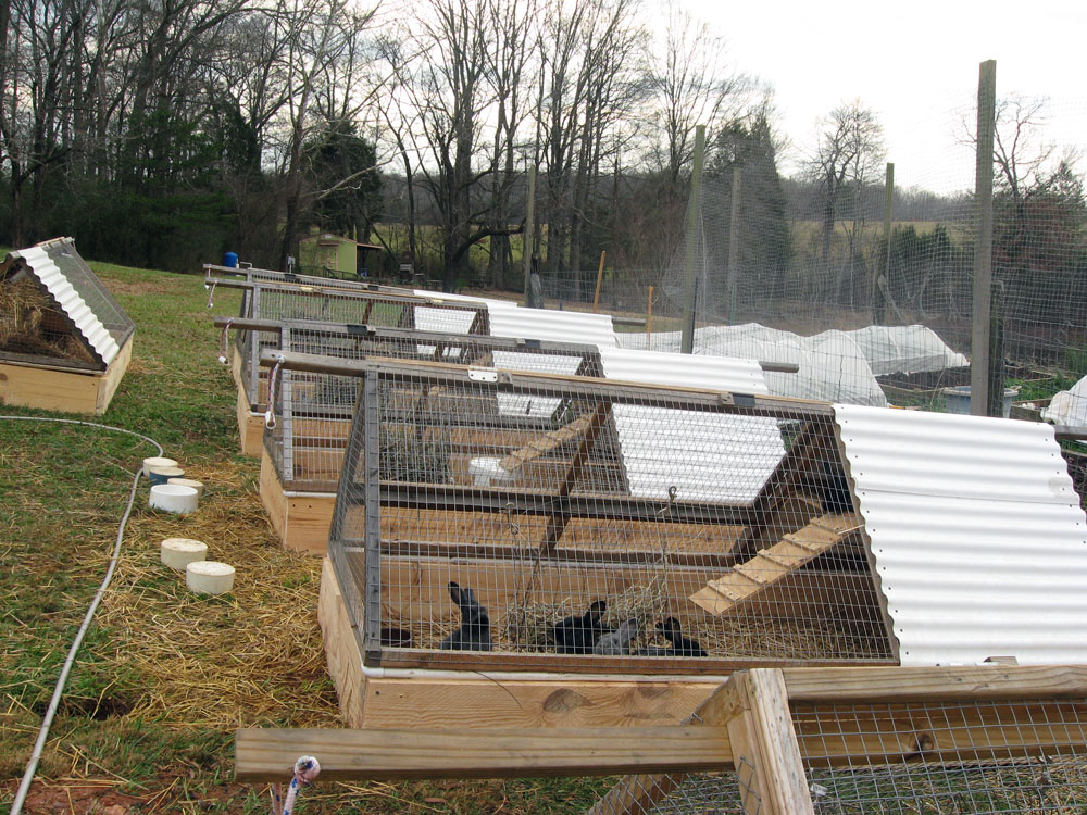 Rabbit Tractor Designs : Rabbit tractor raised beds spellcast farm and photography